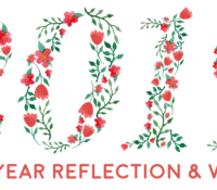 2019 Reflection / Wrap-Up